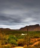 Gila rzeka Arizona Zdjęcie Royalty Free
