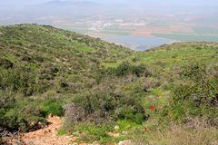 Gilboa, Israel. Landscape of Gilboa hills and view of israel valley at the spring, Israel Stock Image