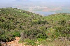 Gilboa, Israel Stock Image