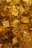 gilded Fotografie Stock