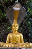 Gilded Buddha sits under a cobra Royalty Free Stock Images