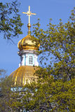 Gilded dome and the young leaves Royalty Free Stock Photography