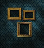 Gilded frames damask wall. Three gilded frames on dark damask pattern wall paper royalty free stock image