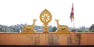 Gilding deer statues. Auspicious symbol. Buddhist temple. Stock Image