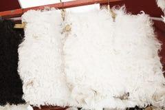 Gilets de laine Photos stock