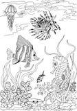 gili印度尼西亚海岛在海龟水下的世界附近的lombok meno 热带海的动物 成人antistress彩图的徒手画的略图 免版税库存照片