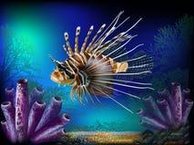 gili印度尼西亚海岛在海龟水下的世界附近的lombok meno 皇族释放例证