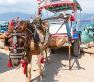 Gili transport Royalty Free Stock Photo