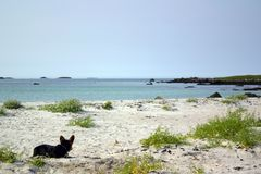 Gilla en solig strand i Crete, men inte royaltyfri fotografi