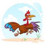 Gillend lopend de vogelkarakter van beeldverhaalturkije Vectorillustratie van de vlucht van Turkije stock foto