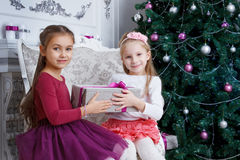 Gilrs holding Christmas gift near christmas tree Stock Photos