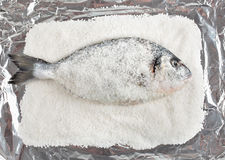 Gilt head bream on aluminum foil Royalty Free Stock Image