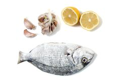 Gilt-head bream fish. With lemon and garlic Royalty Free Stock Images