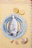 Gilt-head bream fish. On a plate Stock Photo