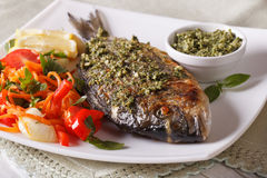 The gilt-head bream fish with pesto and salad macro. Horizontal. The gilt-head bream fish with pesto sauce and fresh salad on the plate macro. Horizontal Royalty Free Stock Photography