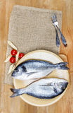 Gilt-head bream fish on wooden background. Mediterranean tavern, delicious meal Stock Photos