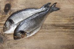 Gilt-head bream fish on wooden background. Mediterranean tavern, delicious meal Stock Image