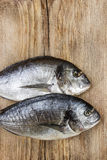 Gilt-head bream fish on wooden background. Mediterranean tavern, delicious meal. Write down here your best recipe for fish plate Stock Images