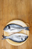 Gilt-head bream fish on wooden background. Mediterranean tavern, delicious meal. Write down here your best recipe for fish plate Royalty Free Stock Photos