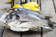 Gilt-head bream fishes in wicker basket. On wooden table. Lanterns and juicy lemons in the background Stock Photo