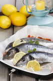 Gilt-head bream fishes. On wooden table. Lantern and juicy lemons in the background Royalty Free Stock Photo