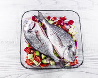 Gilt-head breams and vegetables in a glass bakeware. Stock Images