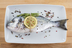 Gilt-head sea bream fish with spices on a platter Royalty Free Stock Photo