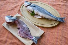 Gilthead already filleted and whole sea bass. Coupled of gilthead already filleted and whole sea bass on wooden bases Royalty Free Stock Images