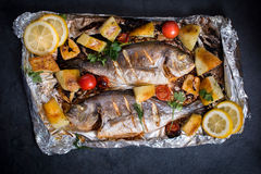 Gilthead fish and ingredients Stock Photo