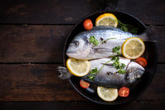 Gilthead fish in pan with ingredients Stock Photography