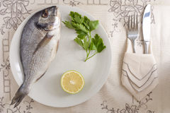 Gilthead with Lemon and Parsley Royalty Free Stock Photo