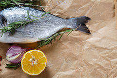 Gilthead with lemon and rosemary Royalty Free Stock Image