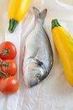 Gilthead seabream. Gilt head sea bream fish royalty free stock image