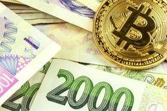 Giltiga tjeckiska sedlar och Bitcoin Riskinvestering Faktisk valuta Online-handel Arkivbilder