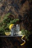 Gim, tônico com fatias de limão e um ramo do zimbro foto de stock royalty free