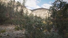 Gimbal down shot of merced river in daytime. Wide photo Stock Images