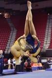 2015 gimnasia de las señoras del NCAA - WVU Imagenes de archivo
