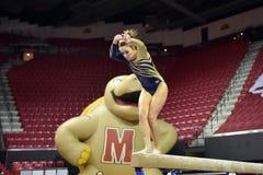2015 gimnasia de las señoras del NCAA - WVU Fotos de archivo