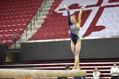 2015 gimnasia de las señoras del NCAA - WVU Foto de archivo