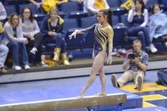 2015 gimnasia del NCAA - estado de WVU-Penn Fotografía de archivo