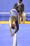 2015 gimnasia del NCAA - estado de WVU-Penn Foto de archivo libre de regalías