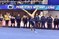 2015 gimnasia del NCAA - estado de WVU-Penn Fotos de archivo