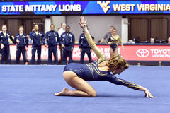 2015 gimnasia del NCAA - estado de WVU-Penn Imagen de archivo libre de regalías