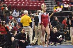 2015 gimnasia del NCAA - Maryland Imágenes de archivo libres de regalías