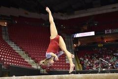 2015 gimnasia del NCAA - Maryland Foto de archivo