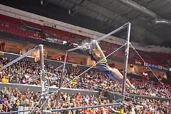 2015 gimnasia del NCAA - Virginia Occidental Fotos de archivo