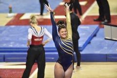 2015 gimnasia del NCAA - Virginia Occidental Imagenes de archivo