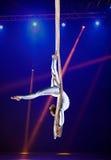 Gimnasta del aire del circo de la mujer joven Imagen de archivo libre de regalías