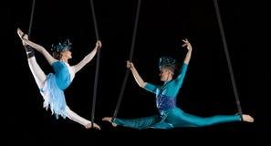 Gimnasta joven del aire del circo de los pares Fotografía de archivo