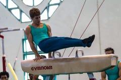 Gimnastyczek konkurowania Męski koń Fotografia Stock